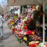 un chiosco di fiori sulla rambla