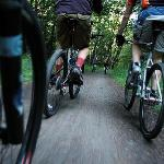 Foto di Marbella Rent a Bike