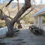 the patio outside the dining room