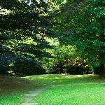 Photo of Bed & Garden