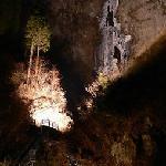 古閑の滝:ライトアップ