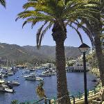 Catalina Island Visitors Bureau Photo