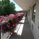 Foto de Manti Country Village Motel