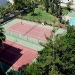 canchas/jardines