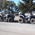 Two of the quads