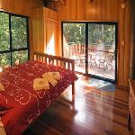 Large windows look out to the rainforest
