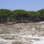 Photo of Camping Village  Pedra e Cupa