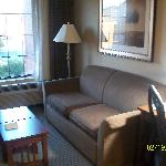 sofa w/ pull out bed if needed