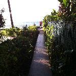 garden path to the beach