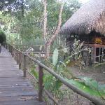 Über Holzstege zur komfortablen Hütte