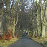 Drive up to the grounds