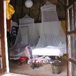 looking into cabana