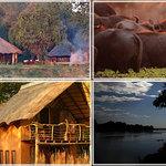 Track & Trail River Camp, Mfuwe