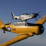 Stallion 51's  T-6 Texan and P-51 Mustang