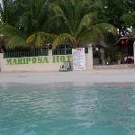 mariposa from the water