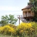 Maisons dans les branches de DéfiPlanet'