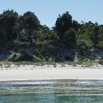 One of the many beaches in Jervis Bay