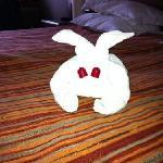 towel rabbits!