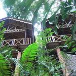 Green Hill Guesthouse & Trekking Foto