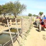 Having fun on the Tractor Tour #Safari Ostrich Farm