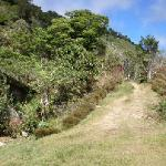 Entrance to Armonia Ambiental