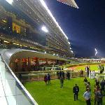 Meydan Grandstand