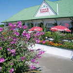 Sara's Tearooms in Bloom