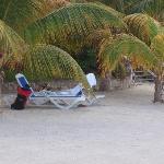 Ombre et chaises en quantité