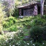 Hortense Miller Back Yard Pavilion