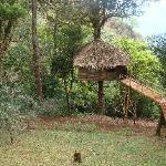 Nature Zone Resort Foto