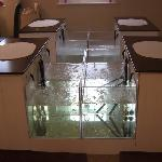 The luxury Fish Spa area