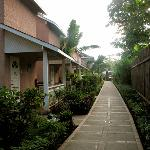 A quiet stroll along the gardens