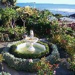 Garden as seen from patio