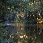 Wild swimming spot
