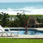 Photo de Hotel Casa Azul