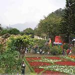 Boquete-feria de las flore y del café