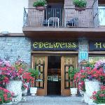 Photo of Edelweiss Hotel