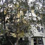 Shree Badrish Hotel