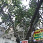 Pathik Hotel Foto