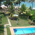 nice garden and pool