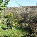 Garden at Trengilly