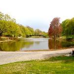 One side of Washington Park