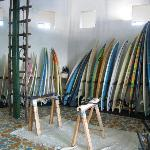 Boards for rent...