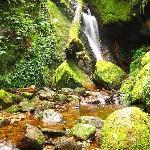 Mersilau trail #2