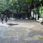La entrada del zoo