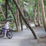 biking through the nature trails