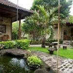 Fishpond and Garden