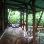 the deck outside the room for watching the monkeys
