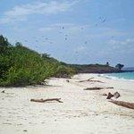 isla Iguana - spiaggia