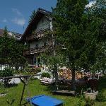 Alpengruss im Sommer